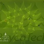 PhycoTech, Inc.'s photo